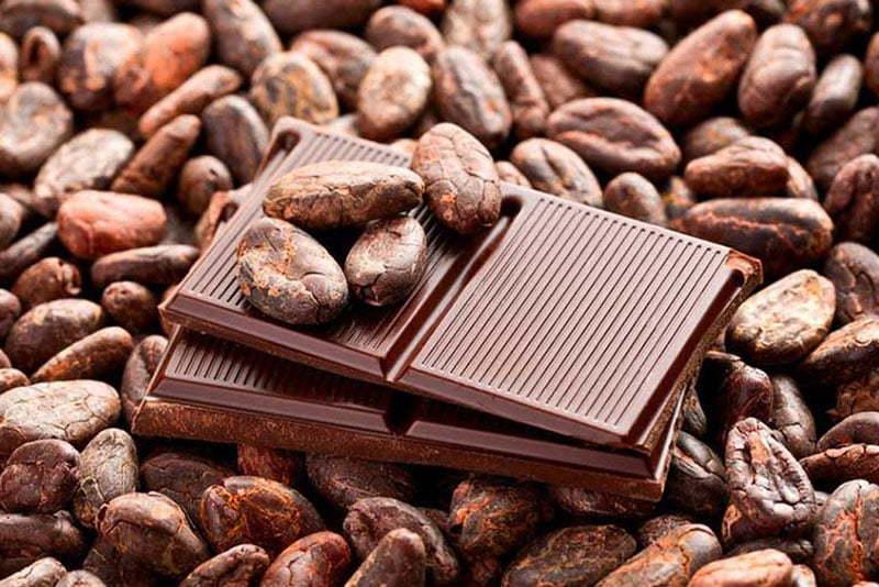 cokolada kakao